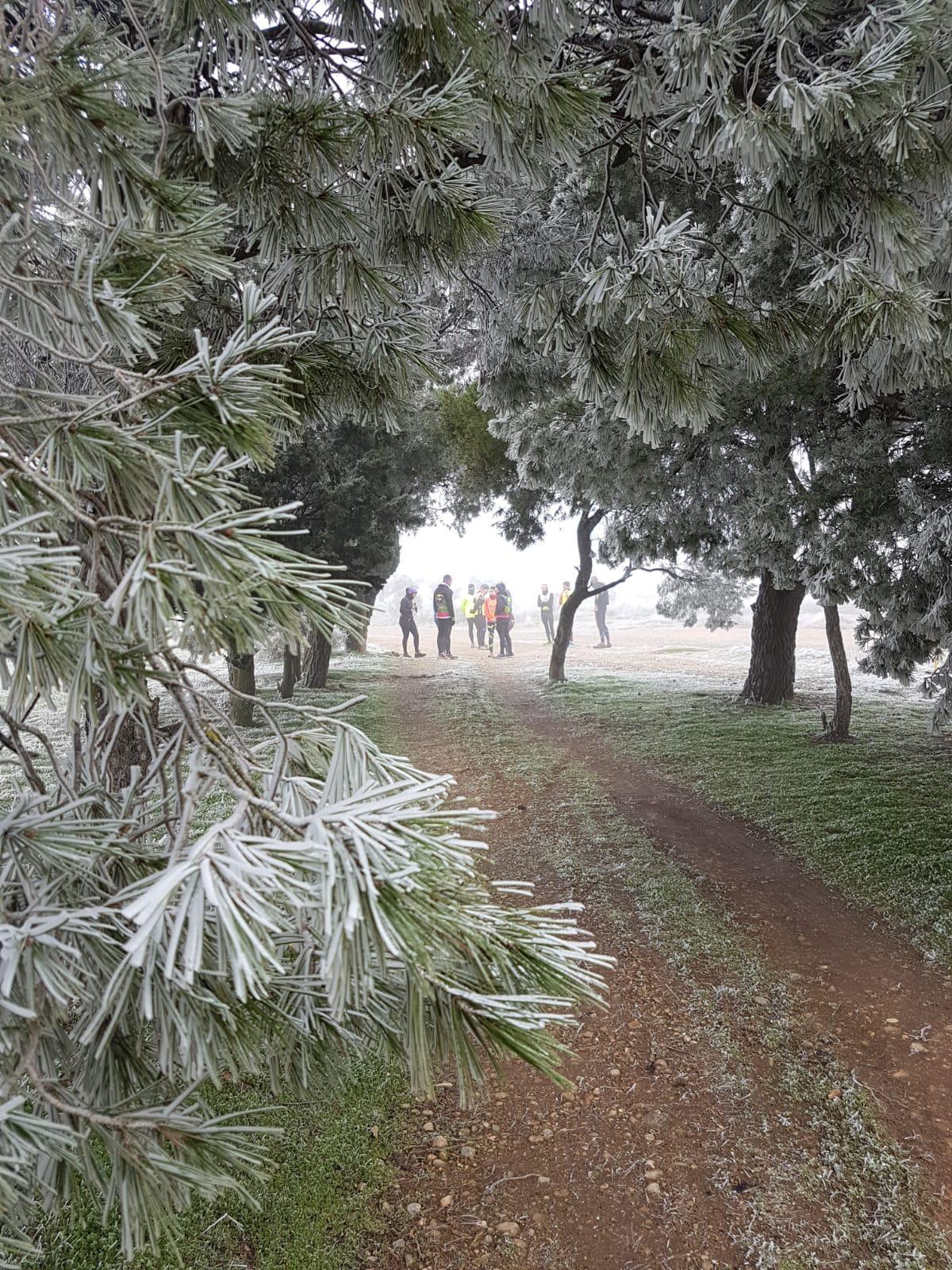 Entreno reconeixement recorregut trail i caminada 19/01/2019